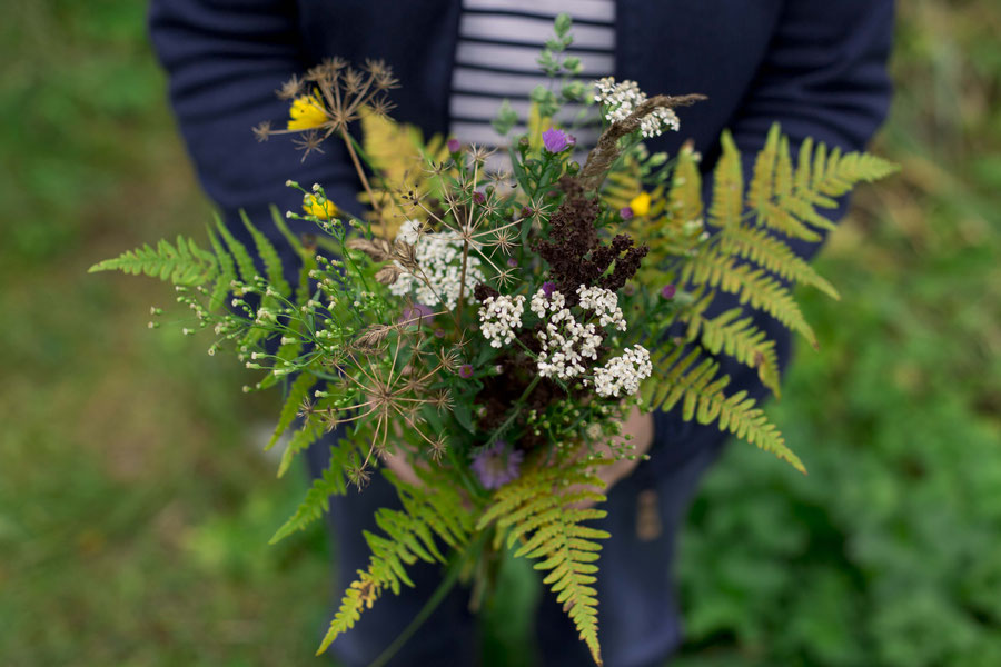 An eclectic bouquet of autumn flowers from the side of the road, Estonia