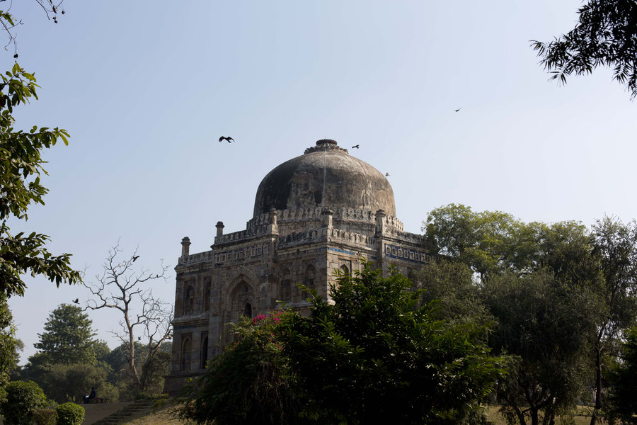 Shish Gumbad tomb, Loghi garden, India