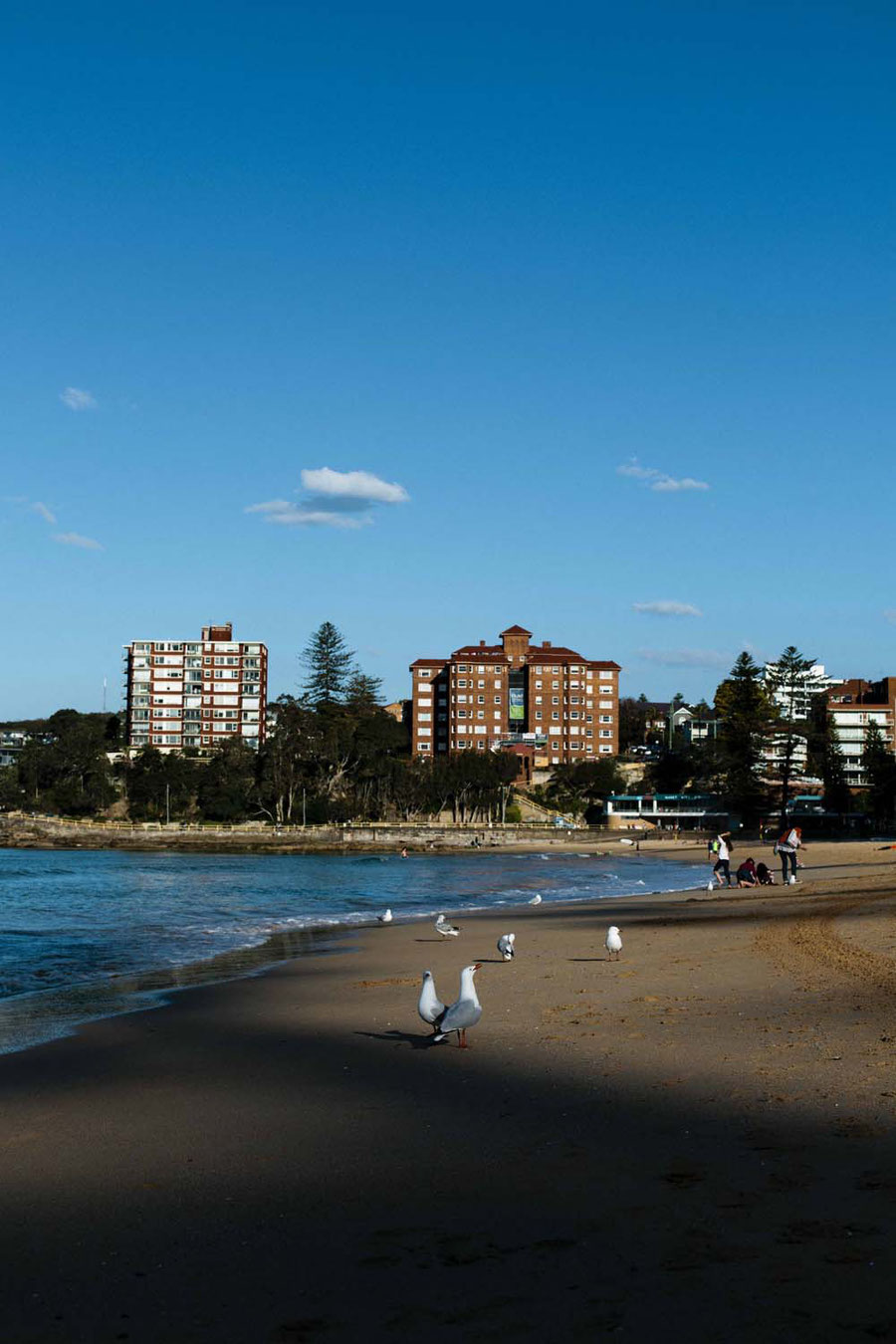 Manly Beach, Sydney, Australien