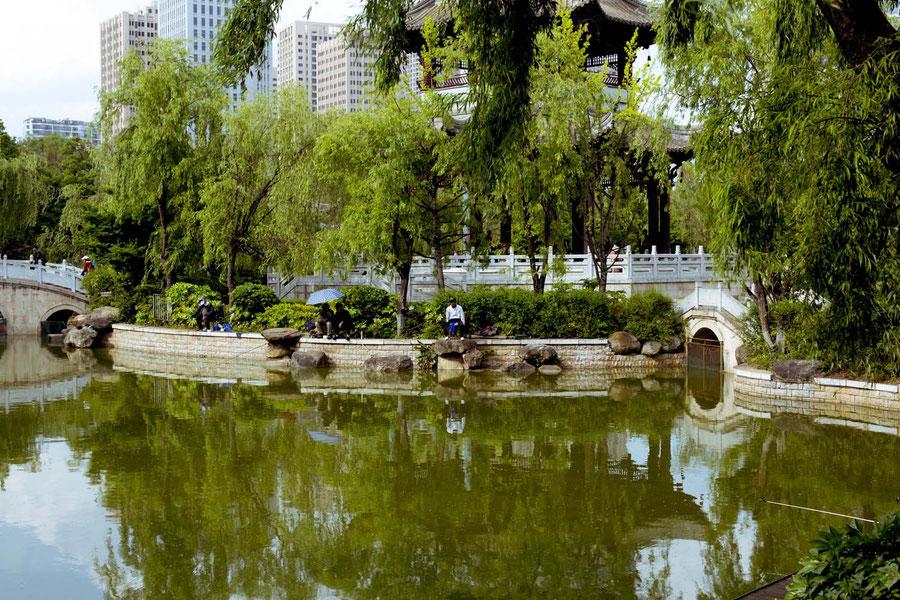 Fischermen in the park, Kunming, China