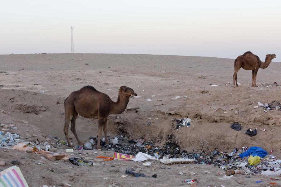 Realität vs. Traum, Wüste Manajab, Iran