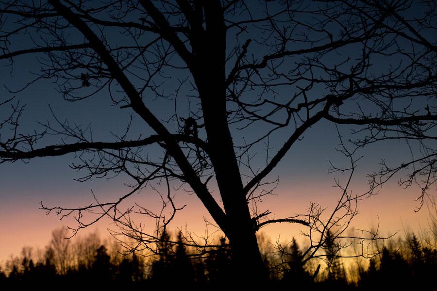 Einer der zahllosen spektakulären Sonnenaufgänge in Finnland