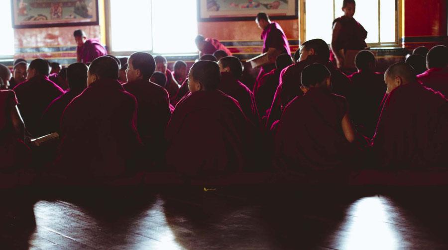 Mönche während des Gesangsunterrichts, Kopan Monaestery, Nepal