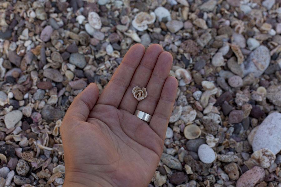 Steine in Rosenform, in Gedanken in Yervan, Hormuz, Iran