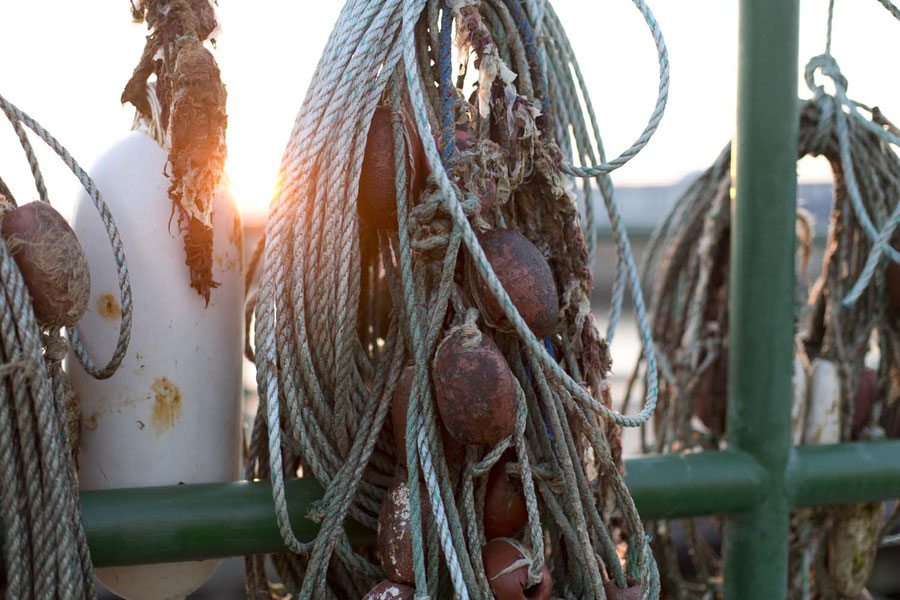 Fishing net in the harbour of Helgoland