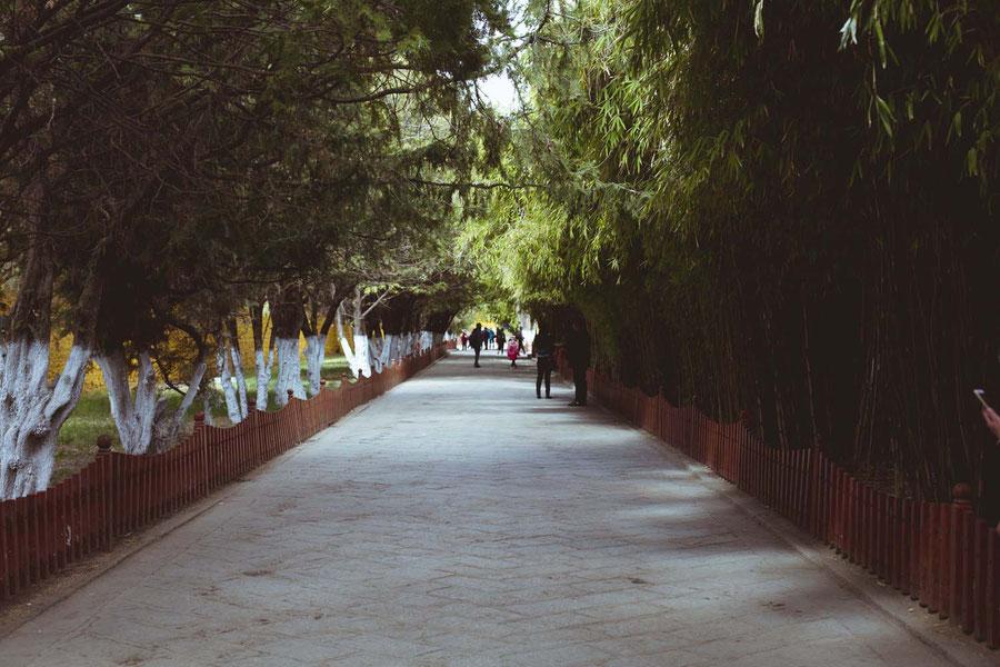 Summer Palace, Lhasa, Tibet, China
