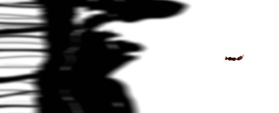 Fuch auf einer Wiese mit langen Schatten