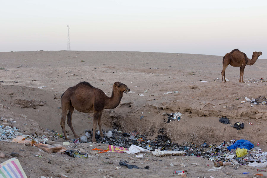 Dream vs. reality, Maranjab desert, Iran
