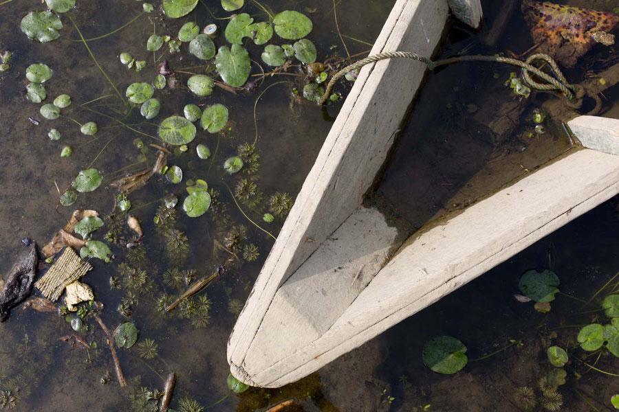 See, Sumpf oder Kloake? Pokhara, Nepal