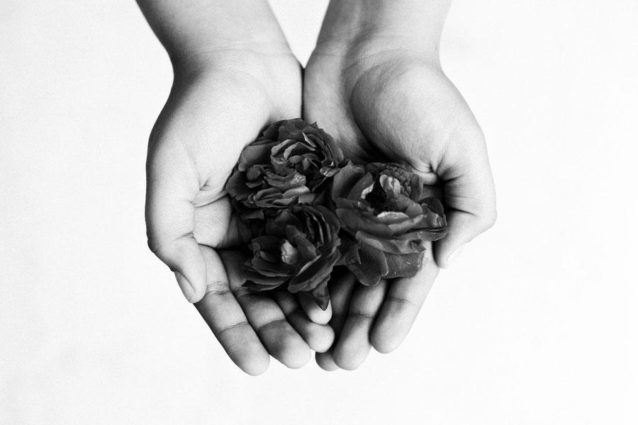 Rosen gehen immer, Indien