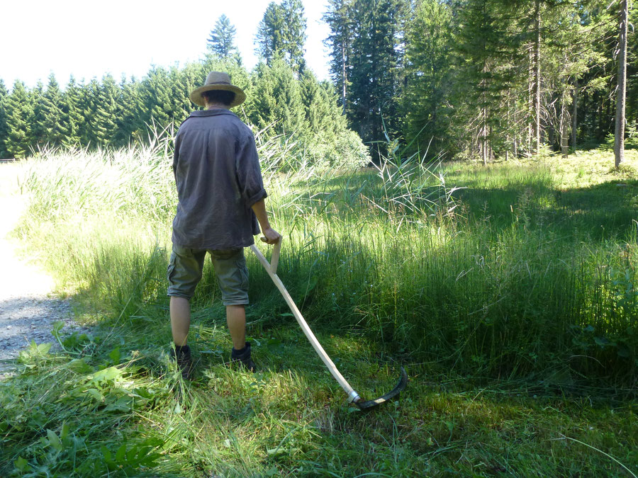 United Natur - Pflege der Himmelswiese