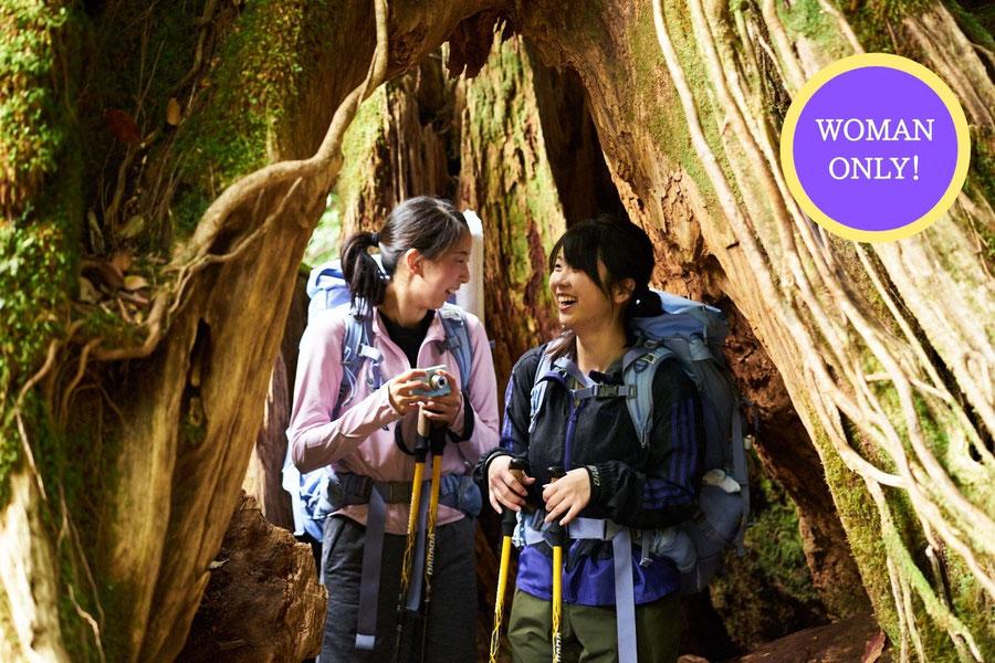【女性参加限定】「縄文杉1泊2日ガイドツアー(白谷コース)」ご予約受付中!女性一人旅の方にもおすすめ!
