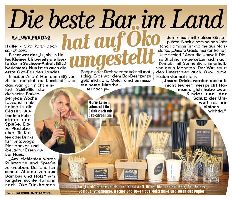 Bild Sachsen-Anhalt Halle (Saale) Ausgabe 13.09.2018