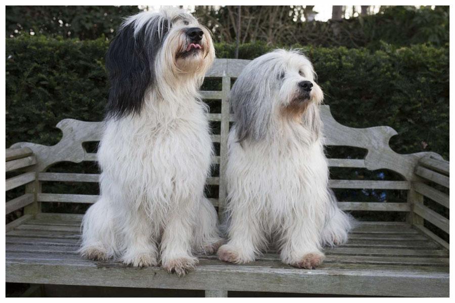 Frieda und Emma auf der Gartenbank