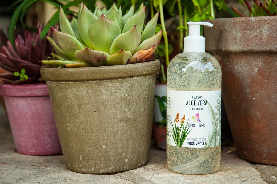aloe vera de cultivo ecológico Fuerteventura-cosmética natural ecológica-decoloresnatur
