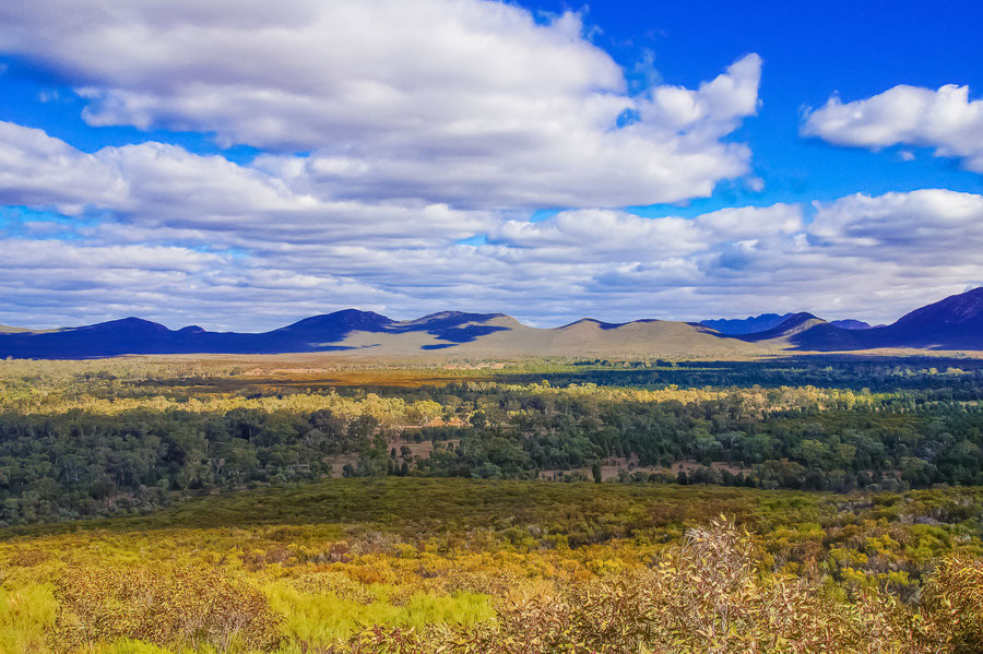 Flinders Ranges, Highlight, Reiseblog Australien