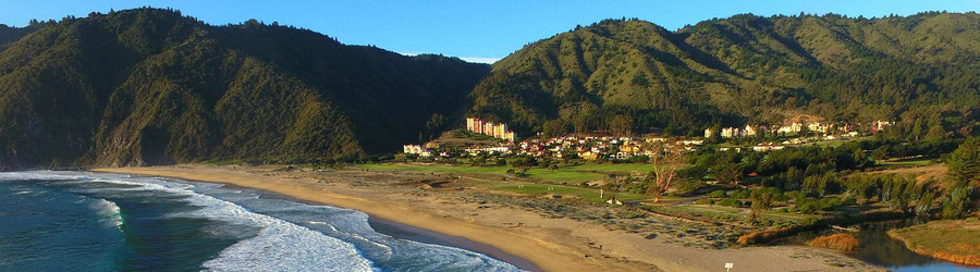 Central Chile Vital
