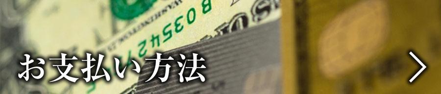 分割や各種クレジットも利用可。詳しくはこちらをクリック。