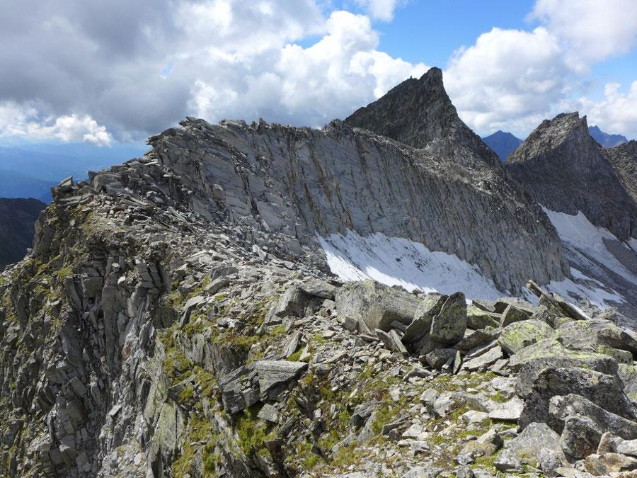 JWD Bergtouren Zillertaler Alpen Östlicher und Westlicher Hochwart