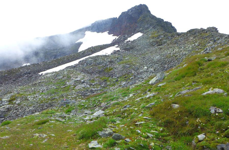 In 2500 Metern Höhe wurde es steiniger. Ein mäßig steiles Firnfeld (auf dem Foto noch nicht zu sehen) musste erstiegen werden.
