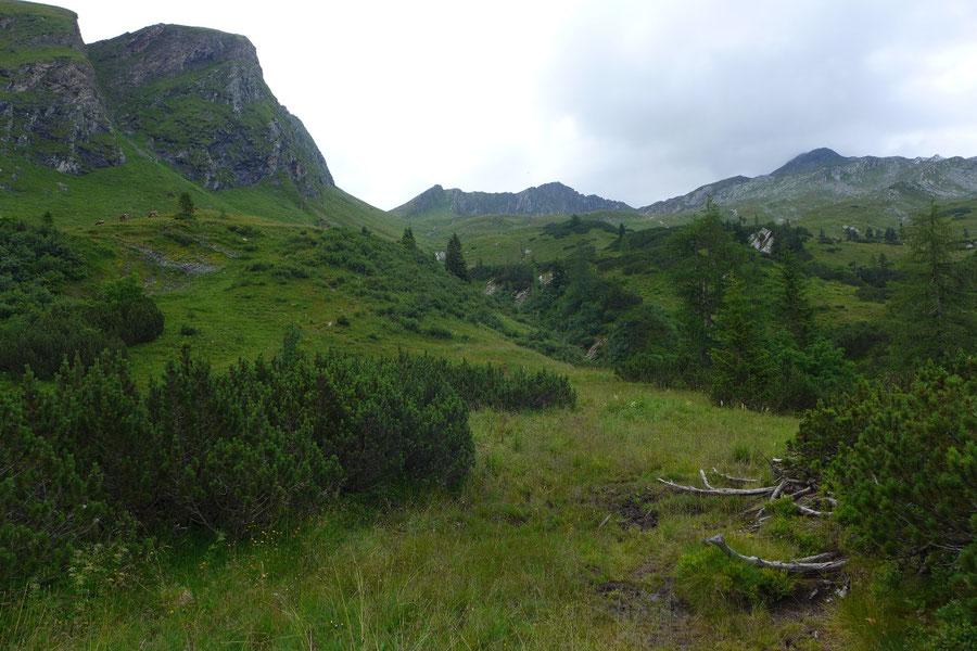 Albert-Biwak - Wanderung, Bergtour, Murtörl, Großarltal - Aufstieg Murtörl