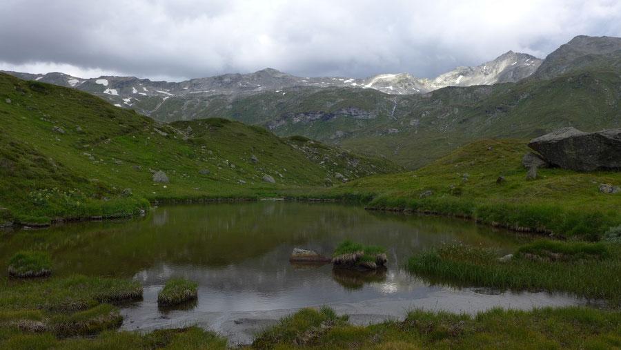 Wildenkogel - Achselsee - Bergtour, Badener Hütte, Wildenkogelweg