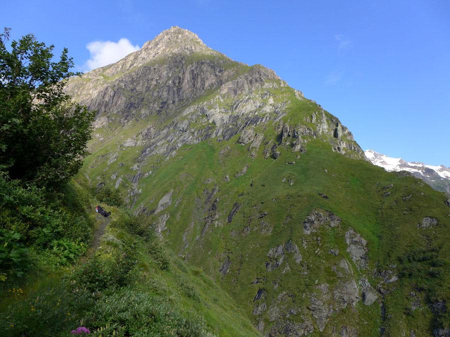 Neue Reichenberger Hütte - Wanderung Lasörlinggruppe - Dabertal unterer Teil