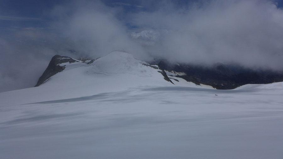 Großvenediger - Bergtour, Gletschertour, Kürsinger Hütte - Oberer Keesboden