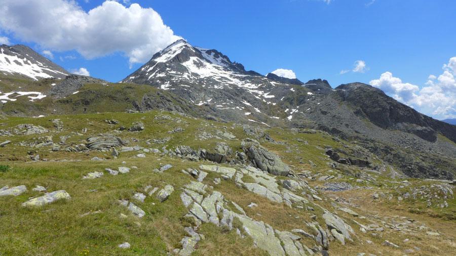 Reißeck Höhenweg - Riedbock über der Riekener Hochalm - Bergtour, Reißeckgruppe, Kärnten