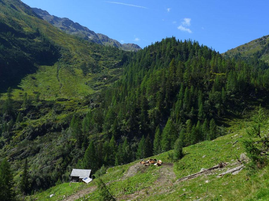 Feldnerhütte - Teuchl, Plotschtrattenhütte - Wanderung, Kreuzeckgruppe, Kärnten