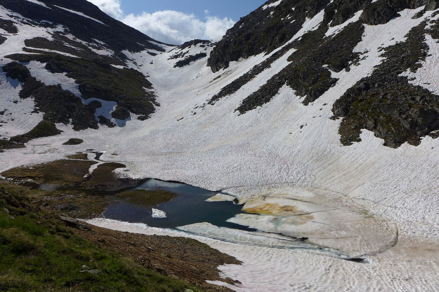 Riedbock - Abzweig vom Reißeck-Höhenweg - Bergtour, Reißeckgruppe, Mölltal, Kärnten