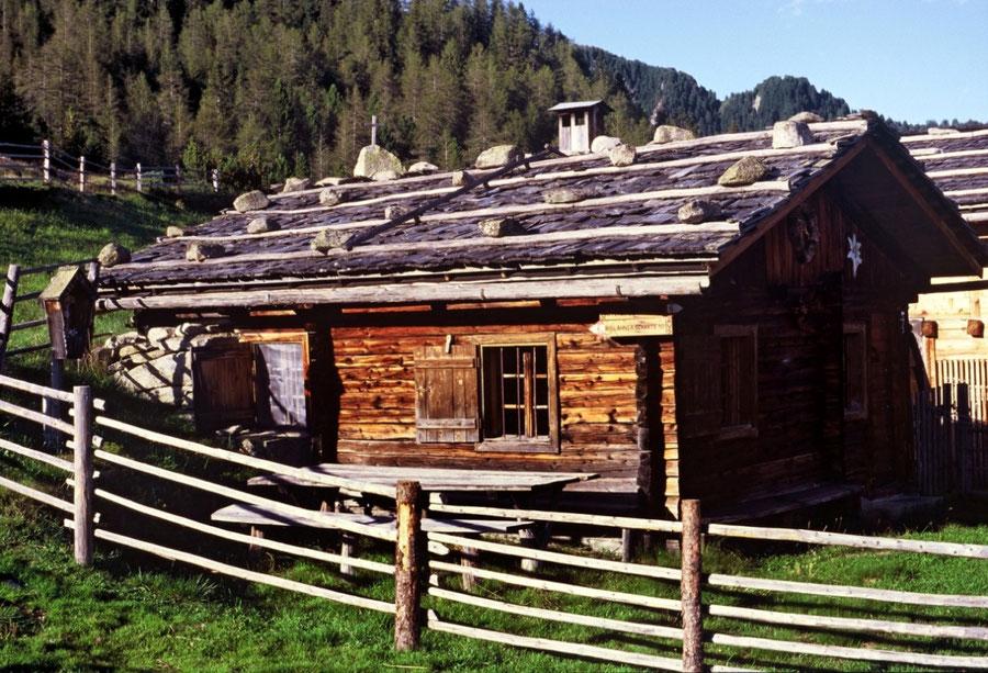Keilbachspitze - Almhütte Holzerbödenalm - Bergtour, Zillertaler Alpen, Ahrntal, Südtirol