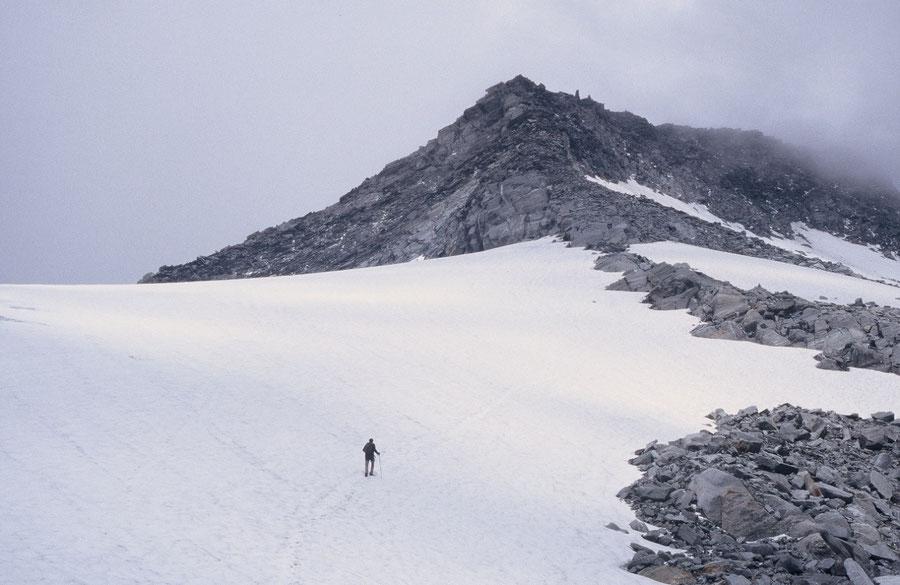 Hoher Weißzint - Aufstieg Weißzintferner - Bergtour, Zillertaler Alpen, Südtirol, Edelrauthütte