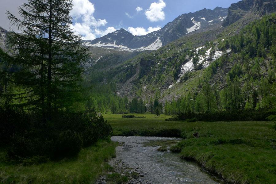 Kaponigtal - Moosboden - Wanderung, Reißeckgruppe, Mölltal, Kärnten