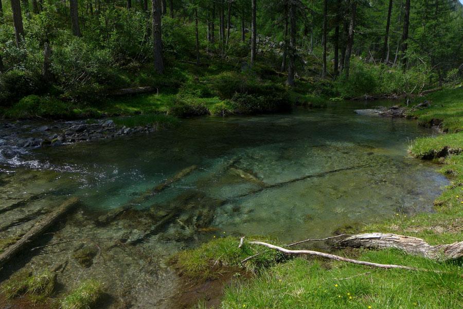 Kaponigtal - Kaponigbach - Wanderung, Reißeckgruppe, Mölltal, Kärnten
