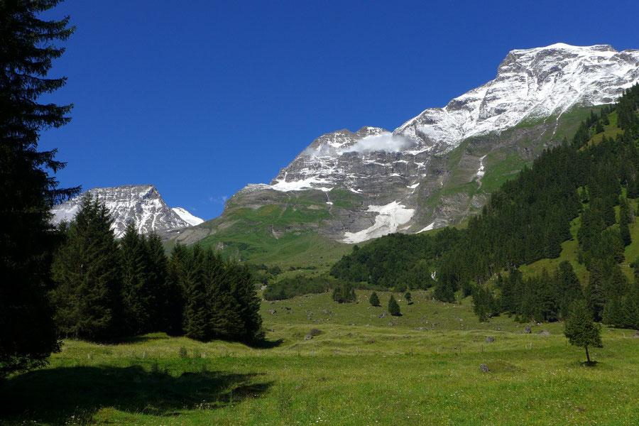 JWD Bergtouren Käfertal & Trauneralm Ferleitental Großes Wiesbachhorn
