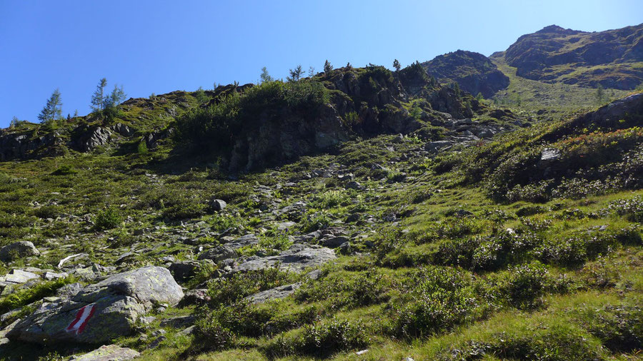Feldnerhütte - Teuchl, Aufstieg Kaltseetörl - Wanderung, Kreuzeckgruppe, Kärnten