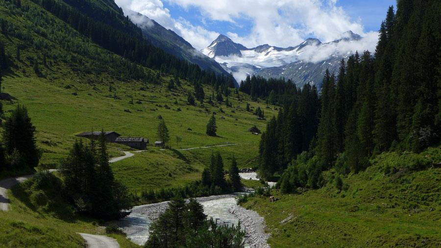 Großvenediger - Bergtour, Gletschertour, Kürsinger Hütte - Obersulzbachtal, Berndlalm