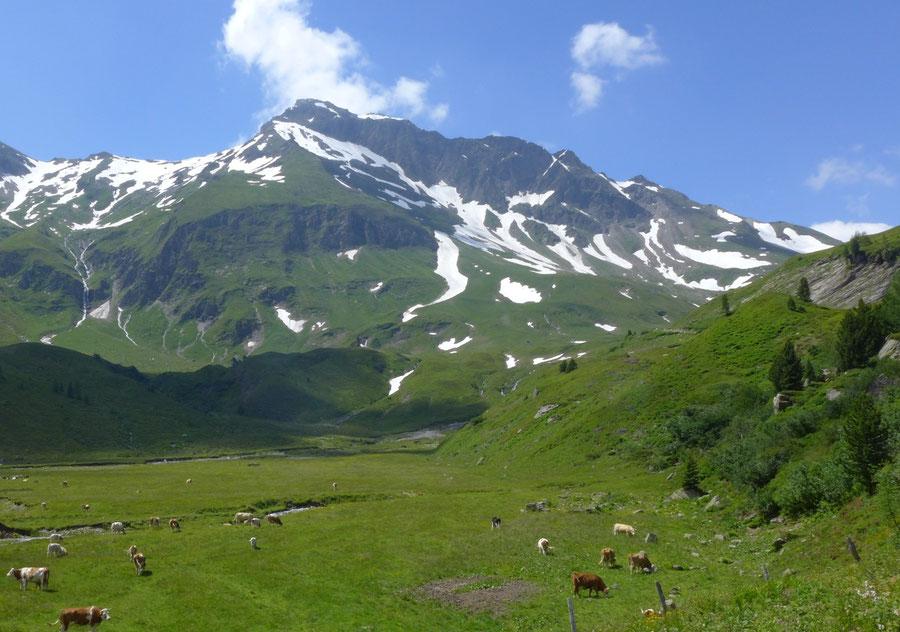 Vorderer Geiselkopf - Jamnigalm - Bergtour, Nordostgrat, Hagener Hütte