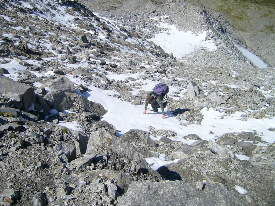 Rosswandspitze - steile Schuttrampe - Bergtour, Zillertaler Alpen, Tirol