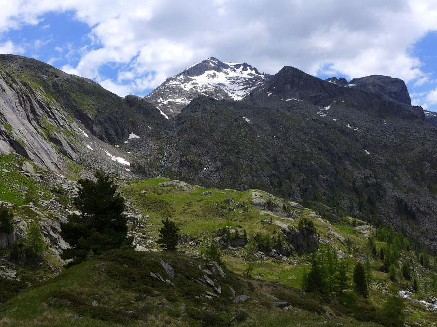 JWD Bergtouren Home Reißeckgruppe Riedbock