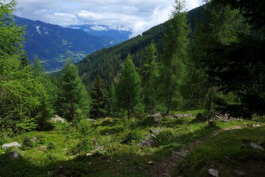 Abstieg vom Kälberhüttl - Mühldorfer Alm Mösernhütte Mernikalm - Wanderung, Kreuzeckbahn, Kärnten