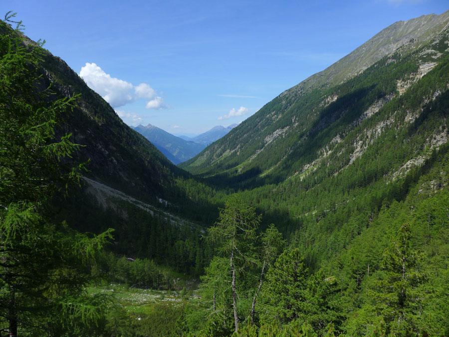 Kaponigtal - Aufstieg zum Moosboden - Wanderung, Reißeckgruppe, Mölltal, Kärnten