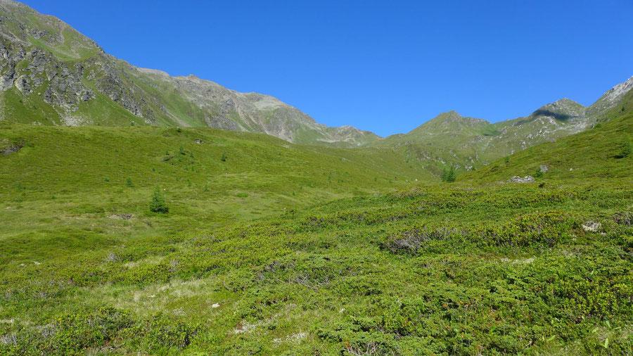 Hoher Sadnig - Mellenböden - Bergtour, Fraganter Hütte, Sadnighaus