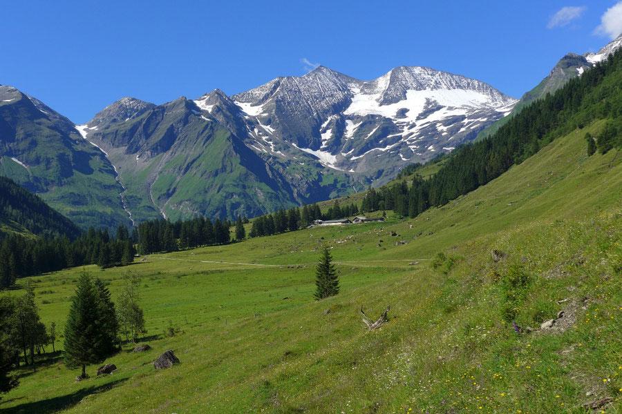 JWD Bergtouren Käfertal & Trauneralm Ferleitental Fuscherkarkopf