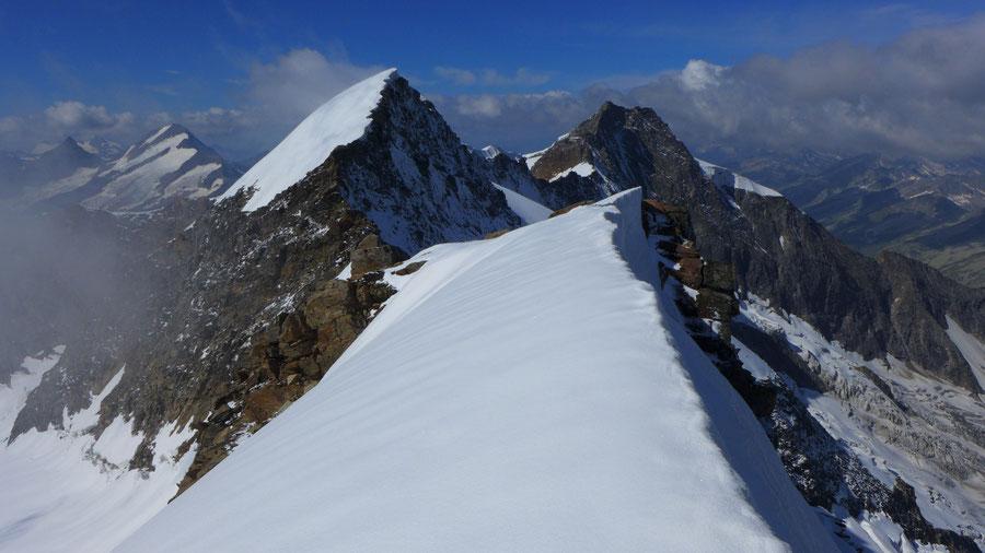 Östliche Simonyspitze - Südostgrat, Firngrat am Gipfel - Bergtour, Essener-Rostocker-Hütte, Osttirol