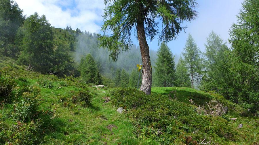 Kälberhüttl Wegweiser - Mösernhütte Mühldorfer Alm - Wanderung, Kreuzeckbahn, Kärnten