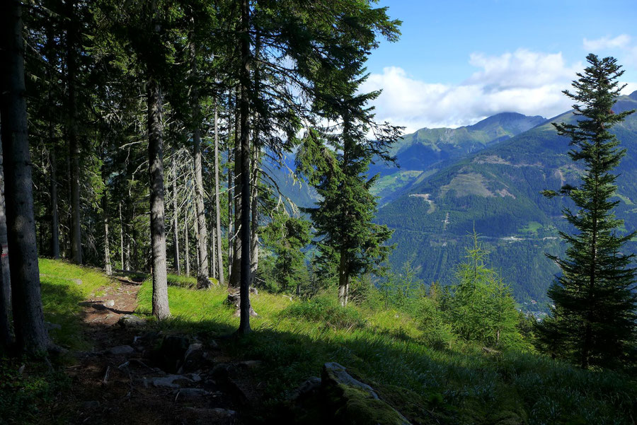 Polinik - Aufstieg Polinikhütte - Normalweg, Bergtour, Kreuzeckgruppe, Kärnten