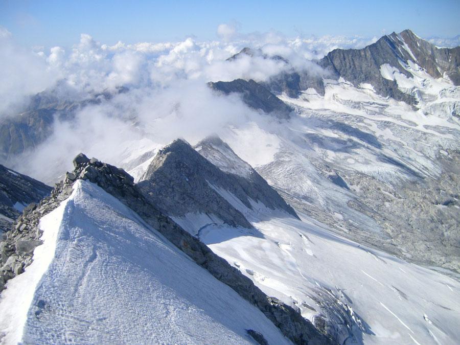 Großer Möseler - Gipfel Blick zum Hochfeiler - Bergtour, Zillertaler Alpen, Südtirol, Chemnitzer Hütte