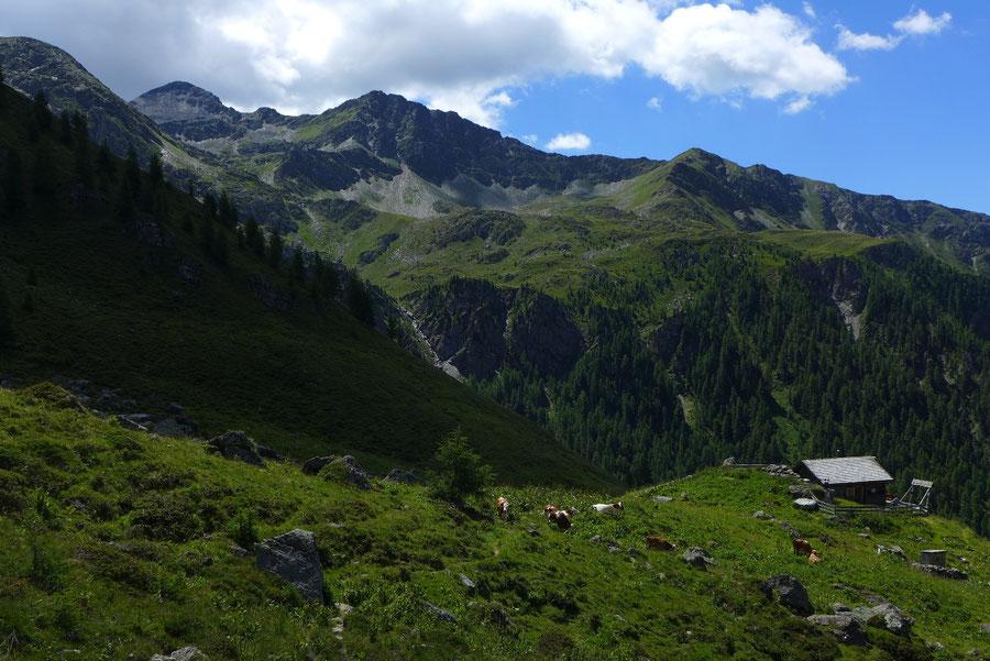 Hoher Sadnig - Burgstalleralm - Bergtour, Fraganter Hütte, Sadnighaus, Sadnigscharte